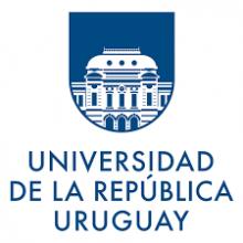 Representante de la Universidad de la República