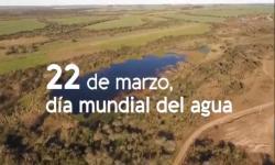 Dia Mundial del Agua 2021