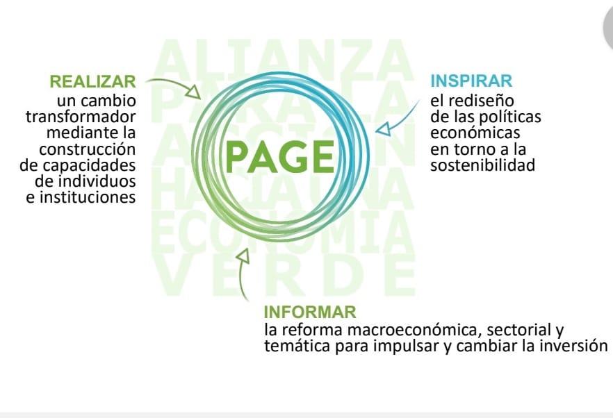 """Proyecto """"Transición hacia una Economía Verde"""", sesión virtual a través de la plataforma ZOOM"""