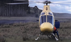 Plan de prevención, detección y combate de incendios forestales