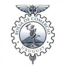 Representante de la Cámara Nacional de Comercio y Servicios del Uruguay
