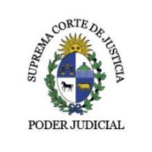 Representante de la Suprema Corte de Justicia