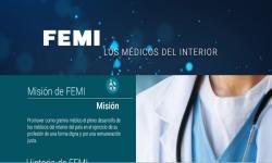 Imagen parcial de sitio web de FEMI