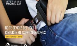 Imagen de persona en asiento trasero colocándose el cinturón de seguridad